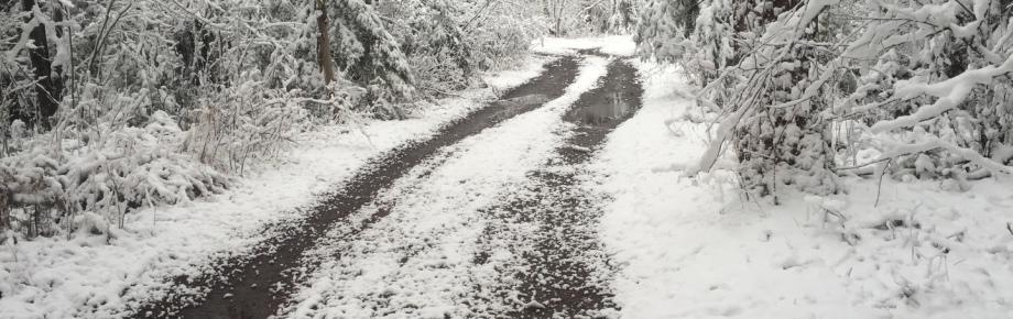 Black Lantern Resort - MN - Home